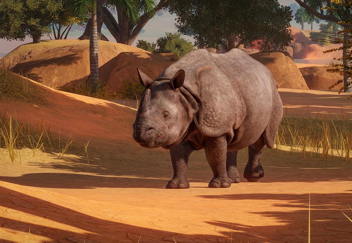 Rhino Triumph
