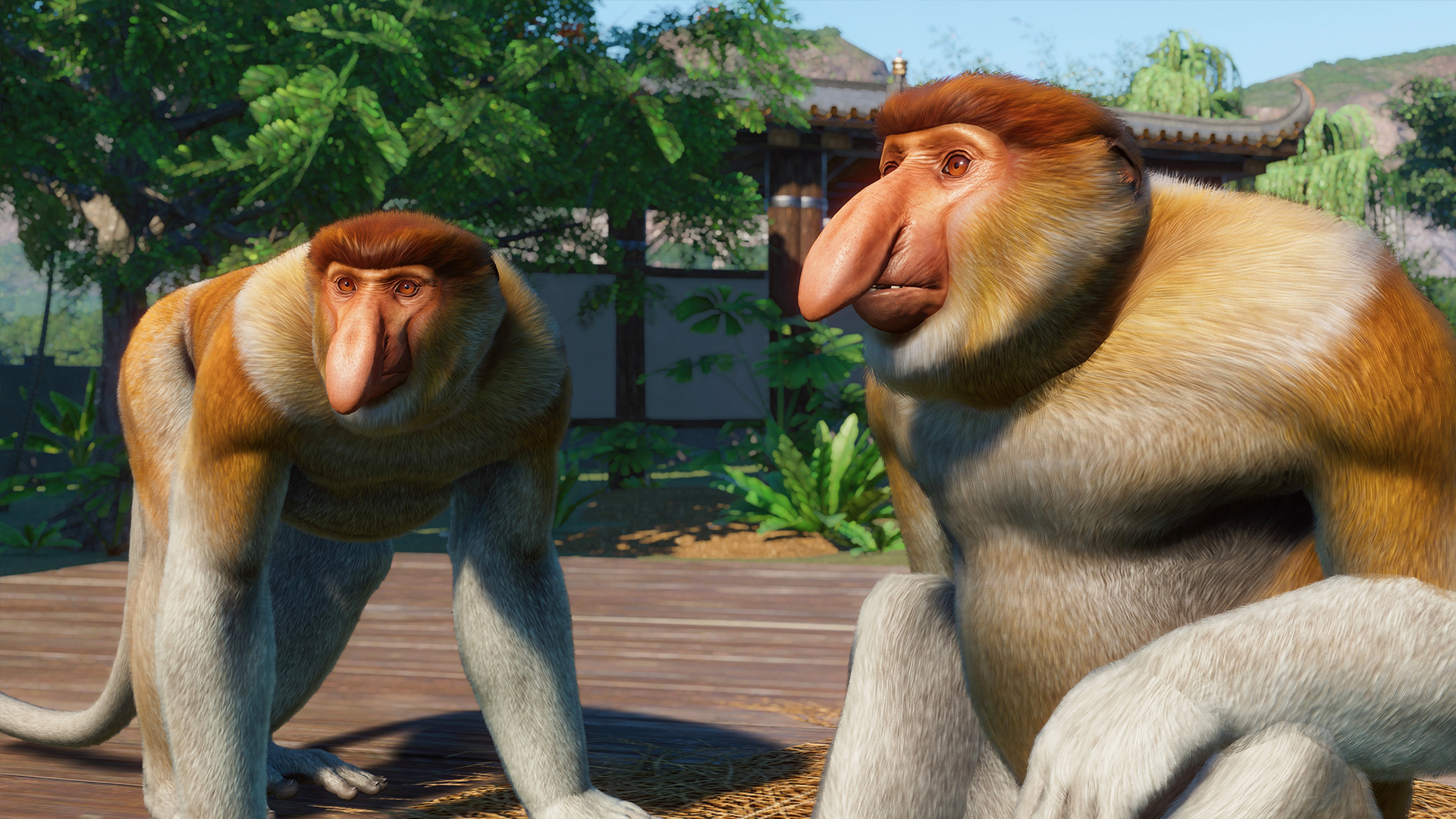 Southeast Asia Animal Pack - Proboscis Monkey